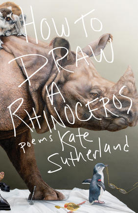 Under the Cover: How to Draw a Rhinoceros, from Porcelain to Poetry