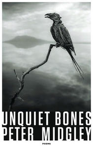 Under the Cover: Language as a Mooring Place in Peter Midgley's Unquiet Bones