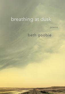 Poetry in Motion: Strength and Repair in Beth Goobie's breathing at dusk