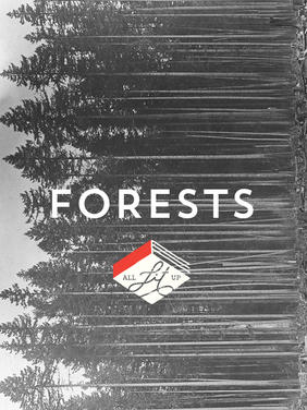 Cover Collage: Forests