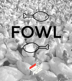 Cover Collage: Fowl