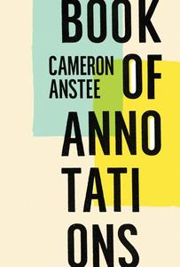 Poetry Cure: Book of Annotations by Cameron Anstee