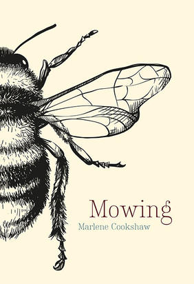 Two poems from Marlene Cookshaw's Mowing