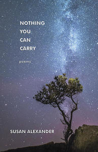 nothing you can carry, book cover, susan alexander